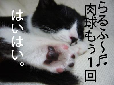 P1030819_1