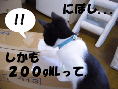 P1070097
